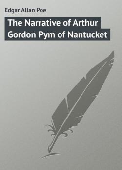 Читать The Narrative of Arthur Gordon Pym of Nantucket - Edgar Allan Poe