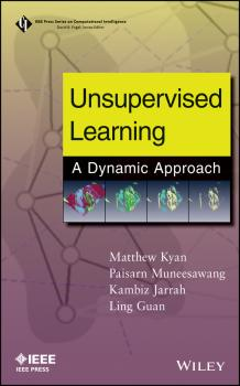 Читать Unsupervised Learning. A Dynamic Approach - Ling  Guan