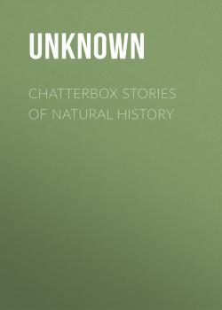 Читать Chatterbox Stories of Natural History - Unknown