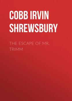 Читать The Escape of Mr. Trimm - Cobb Irvin Shrewsbury