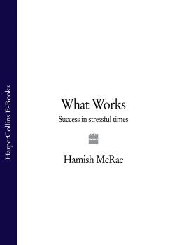 Читать What Works: Success in Stressful Times - Hamish  McRae