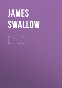 Читать Exile - James  Swallow