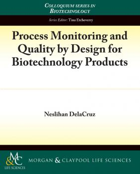 Читать Process Monitoring and Quality by Design for Biotechnology Products - Neslihan Delacruz