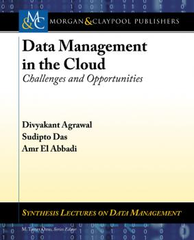 Читать Data Management in the Cloud - Divyakant Agrawal