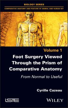 Читать Foot Surgery Viewed Through the Prism of Comparative Anatomy - Cyrille Cazeau