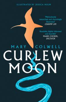 Читать Curlew Moon - Mary Colwell