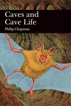 Читать Caves and Cave Life - Philip Chapman