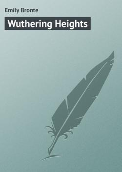 Читать Wuthering Heights - Emily Bronte